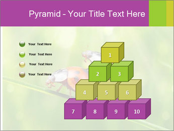 0000080487 PowerPoint Templates - Slide 31