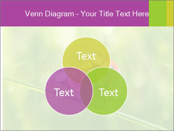 0000080487 PowerPoint Templates - Slide 33