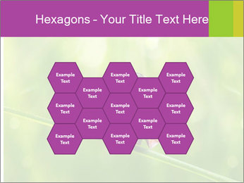 0000080487 PowerPoint Templates - Slide 44