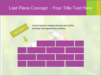 0000080487 PowerPoint Template - Slide 46