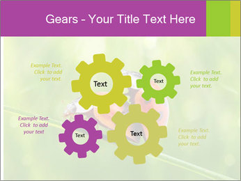 0000080487 PowerPoint Templates - Slide 47