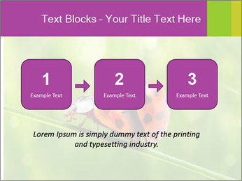 0000080487 PowerPoint Templates - Slide 71
