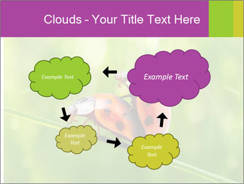 0000080487 PowerPoint Templates - Slide 72