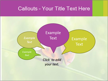 0000080487 PowerPoint Templates - Slide 73