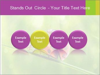 0000080487 PowerPoint Template - Slide 76