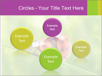 0000080487 PowerPoint Templates - Slide 77