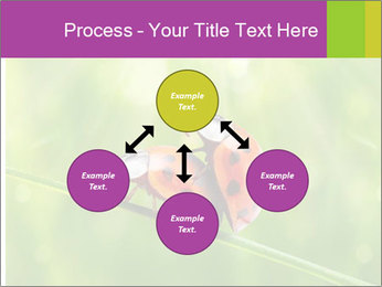 0000080487 PowerPoint Templates - Slide 91