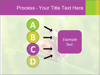 0000080487 PowerPoint Templates - Slide 94