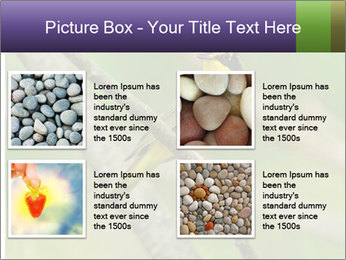 0000080489 PowerPoint Template - Slide 14