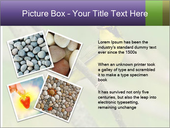 0000080489 PowerPoint Template - Slide 23