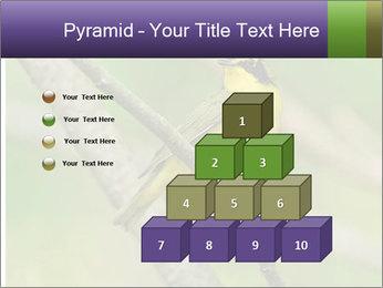 0000080489 PowerPoint Template - Slide 31