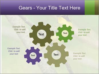 0000080489 PowerPoint Templates - Slide 47