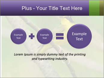 0000080489 PowerPoint Template - Slide 75