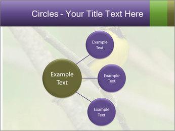 0000080489 PowerPoint Templates - Slide 79