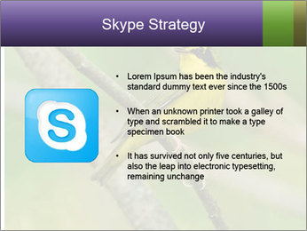 0000080489 PowerPoint Template - Slide 8