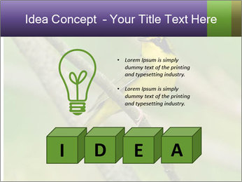 0000080489 PowerPoint Template - Slide 80