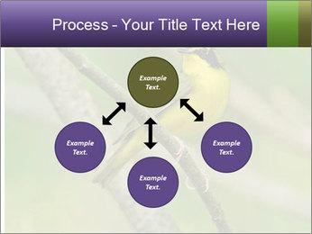 0000080489 PowerPoint Templates - Slide 91