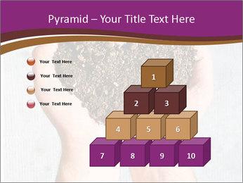 0000080493 PowerPoint Template - Slide 31