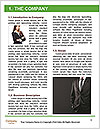 0000080494 Word Template - Page 3