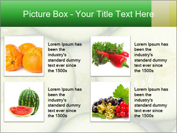 0000080497 PowerPoint Template - Slide 14