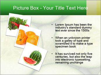 0000080497 PowerPoint Template - Slide 17