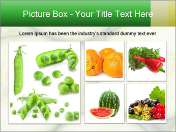 0000080497 PowerPoint Template - Slide 19