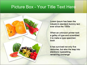 0000080497 PowerPoint Template - Slide 23