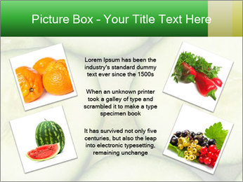0000080497 PowerPoint Template - Slide 24