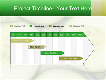 0000080497 PowerPoint Template - Slide 25