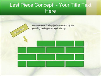 0000080497 PowerPoint Template - Slide 46