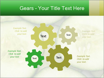 0000080497 PowerPoint Template - Slide 47