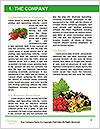 0000080497 Word Template - Page 3