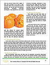 0000080497 Word Template - Page 4