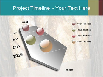 0000080499 PowerPoint Template - Slide 26