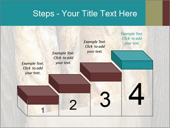 0000080499 PowerPoint Template - Slide 64