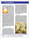 0000080506 Word Template - Page 3