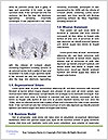 0000080507 Word Templates - Page 4