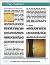 0000080509 Word Template - Page 3