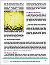 0000080509 Word Templates - Page 4