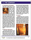 0000080513 Word Templates - Page 3