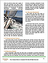0000080517 Word Templates - Page 4