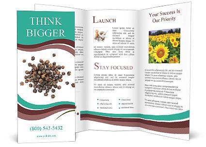 0000080520 Brochure Templates