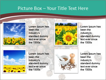 0000080520 PowerPoint Templates - Slide 14