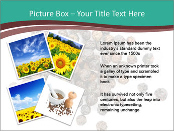 0000080520 PowerPoint Templates - Slide 23