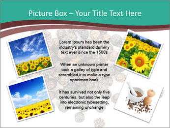 0000080520 PowerPoint Templates - Slide 24