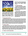 0000080520 Word Templates - Page 4