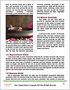0000080525 Word Templates - Page 4