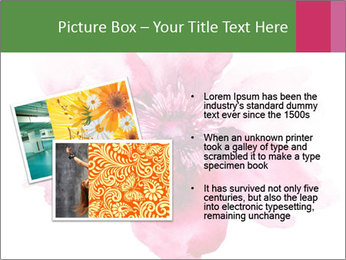 0000080537 PowerPoint Template - Slide 20