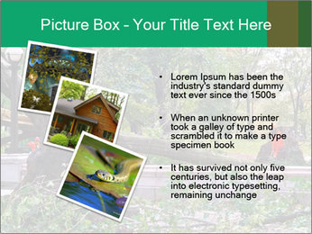 0000080551 PowerPoint Template - Slide 17