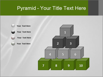 0000080552 PowerPoint Templates - Slide 31